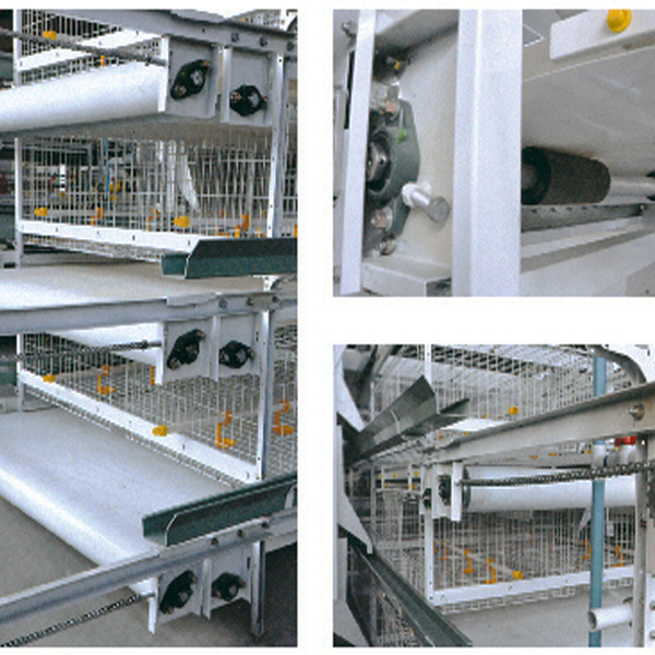 Manufacturing Companies for Chiken Feed Cages Poultry - Automatic Conveyor Belt For Manure Cleaning – Hengyi
