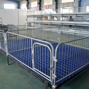 2017 Latest Design Chicken Cage For Nigeria Farms -