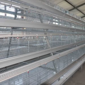 A Type Layer Cage