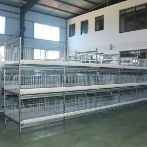 H Type Meat Duck Cage