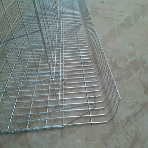 A Cage Lloji Layer