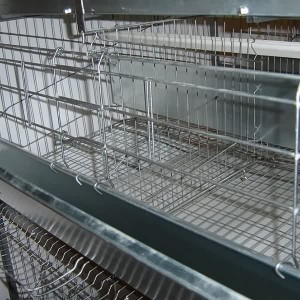 H Koleksi Layer Cage